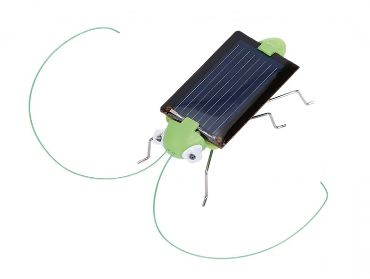 Grilo Solar com Motor Vibracall e Painel Fotovoltaico - Kit Educacional