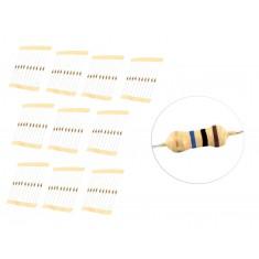 Kit com 100 Resistores 10M 1/4W