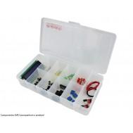 Caixa Organizadora 20,5x11,8x4cm com 10 Divisórias - Pequena
